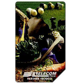Phonecard for sale: Fondo Internazionale per lo Sviluppo Agricolo, 30.06.2000, L.10000