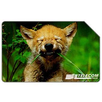Animali per modo di dire, lupo, 30.06.2000, L.10000