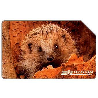 The Phonecard Shop: Animali per modo di dire, riccio, 31.12.2000, L.15000