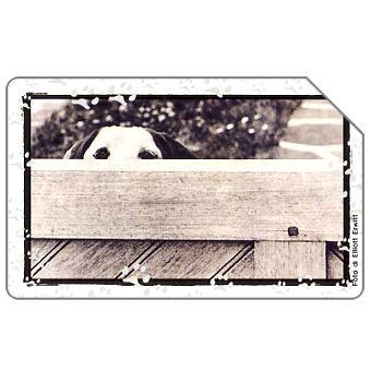 Phonecard for sale: Il mio cane, 31.12.2002, L.5000