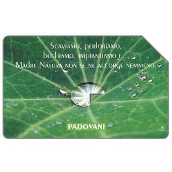 Phonecard for sale: Padovani, 30.06.99, L.5000