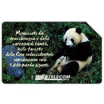 Phonecard for sale: Animali che lasciano un vuoto, panda gigante, 31.12.2003, L.5000