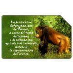 The Phonecard Shop: Animali che lasciano un vuoto, orango, 30.06.2004, € 5,00