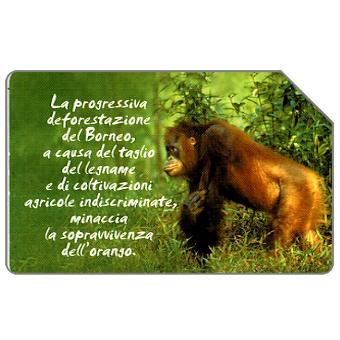 Phonecard for sale: Animali che lasciano un vuoto, orango, 30.06.2004, € 5,00
