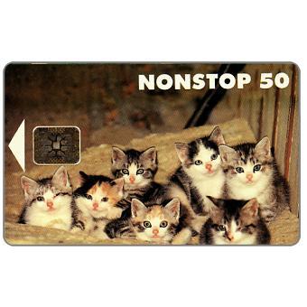 Phonecard for sale: Tele - Kittens, 50 mk