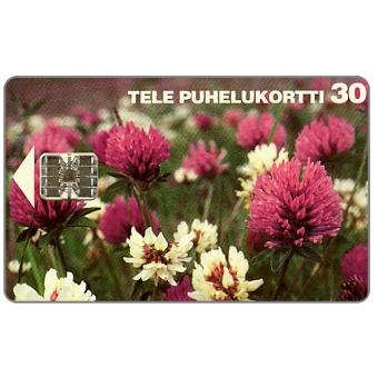 Phonecard for sale: Tele - Clovers, 30 mk