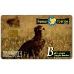 The Phonecard Shop: Fauna Iberica, Buitre negro (Aegypius monachus), 1000 pta