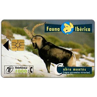 Phonecard for sale: Fauna Iberica, Cabra montés (Capra pyrenaica victoriae), 1000 pta