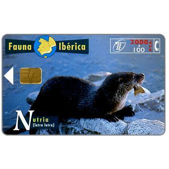 Phonecard for sale: Fauna Iberica, Nutria (Lutra lutra), 2000+100 pta