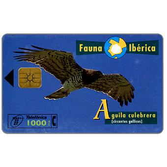 Phonecard for sale: Fauna Iberica, Aguila culebrera (Circaetus gallicus), 1000 pta