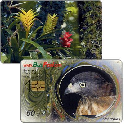 Bulfon - Eagle / Flowers, 50 units