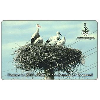 Mobika - Storks Ciconia ciconia, 60 units
