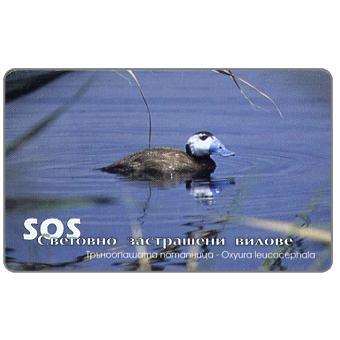 Mobika - SOS - Birds 1, 25 units