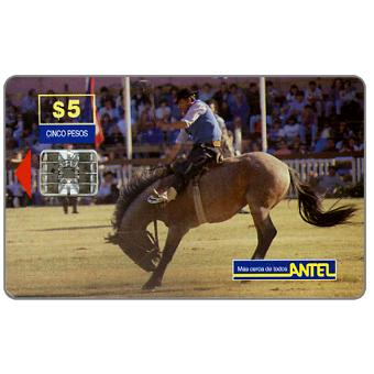 Antel, Rodeo, brown horse, $5