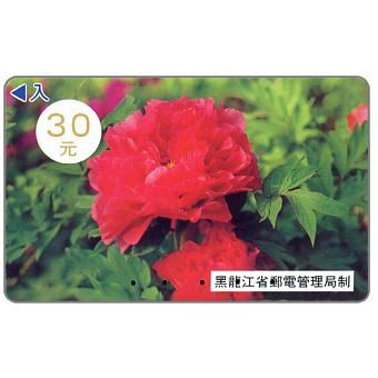 Heilongjiang - Peony, 30 元