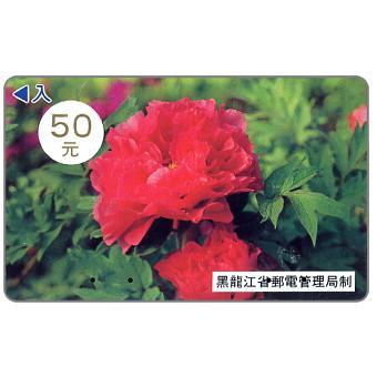 Heilongjiang - Peony, 50 元