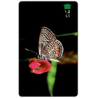 Grass Jewell Butterfly, 34OMNS, RO 1.500