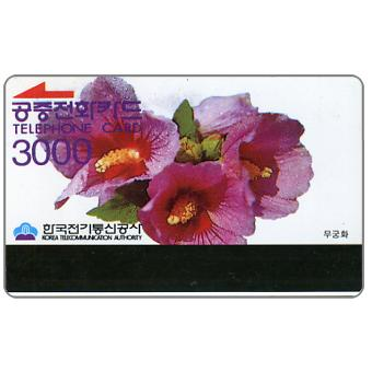 Althea, purple wordings, 3000 won
