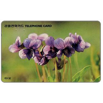 Violets, 2000 won