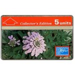 The Phonecard Shop: Gibraltar Candytuft, 230A, 5 units