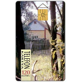 House among trees, 120 units