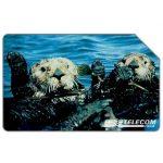 The Phonecard Shop: Italy, Animali per modo di dire, lontra, 31.12.2000, L.5000