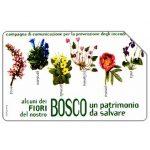 The Phonecard Shop: Italy, Fiori del bosco, 31.12.2004, € 2,50