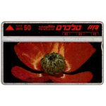 The Phonecard Shop: Israel, Wild Flowers, Crowfoot, 50 units