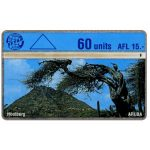 The Phonecard Shop: Aruba, Hoolberg, 409C, 60 units