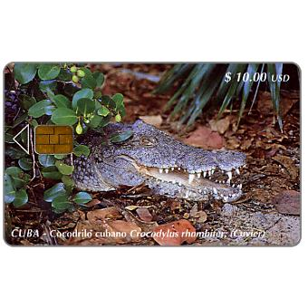 Phonecard for sale: Etecsa, Crocodile, $ 10