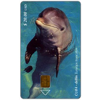 Phonecard for sale: Etecsa, Dolphin, Tursiops truncatus, $ 20