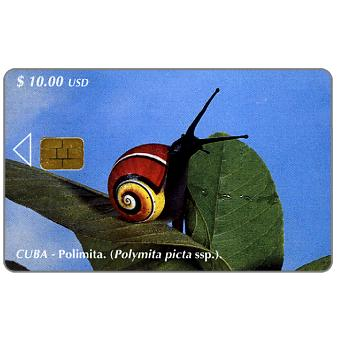 Phonecard for sale: Etecsa, Polymita picta, $ 10
