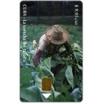 The Phonecard Shop: Etecsa, La cosecha del tabaco, $ 9.95