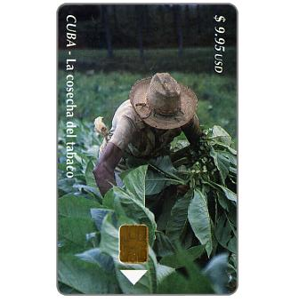 Phonecard for sale: Etecsa, La cosecha del tabaco, $ 9.95