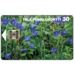 The Phonecard Shop: Tele - Peach-leaved Bellflowers, 30 mk