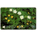 The Phonecard Shop: Tele - Wood Anemones and Yellow Anemones, 6FINA, 20 mk