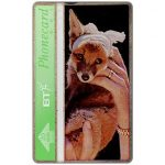 The Phonecard Shop: St.Tiggywinkles, Fox cub, 20 units