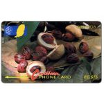 The Phonecard Shop: Nutmeg, 6CGRD, EC$75
