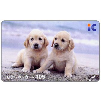 NTT, First IC (integrated circuit card), two dogs, 105 units