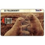 The Phonecard Shop: Norway, Polar bears, 22 units