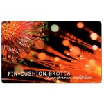 Phonecard for sale: Telkom - Flowers, Pin-cushion Protea, expiry date 2000/09, R50