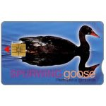 The Phonecard Shop: Telkom - Spurwing Goose, expiry date 2002/03, R20