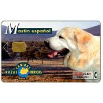 The Phonecard Shop: Spain, Razas Caninas Ibericas, Mastin espanol, 2000+100 pta