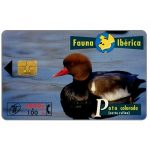 The Phonecard Shop: Fauna Iberica, Pato colorado (Netta rufina), 2000+100 pta
