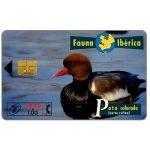 The Phonecard Shop: Spain, Fauna Iberica, Pato colorado (Netta rufina), 2000+100 pta