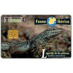 The Phonecard Shop: Spain, Fauna Iberica, Lagartija de las pitiusas (Podarcis pityusensis), 1000 pta