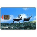 The Phonecard Shop: Telia - Reindeers, 100 units