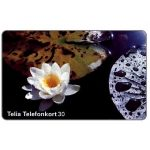 The Phonecard Shop: Sweden, Telia - Water Lily, 30 units