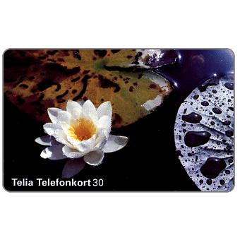 Phonecard for sale: Telia - Water Lily, 30 units