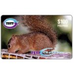 The Phonecard Shop: Hungry Little Squirrel, TT$100
